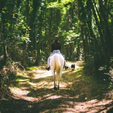 © Clément Chambaud Balades à cheval