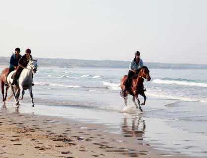 Balades à cheval soulac