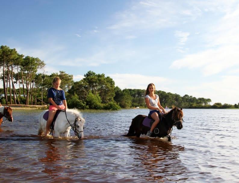 Balade à cheval Lacanau