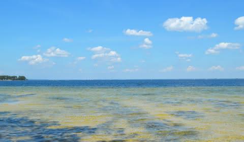 Lac Carcans - © Médoc Atlantique