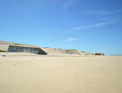 Le Pin Sec Naujac-sur-Mer - © Médoc Atlantique (12)