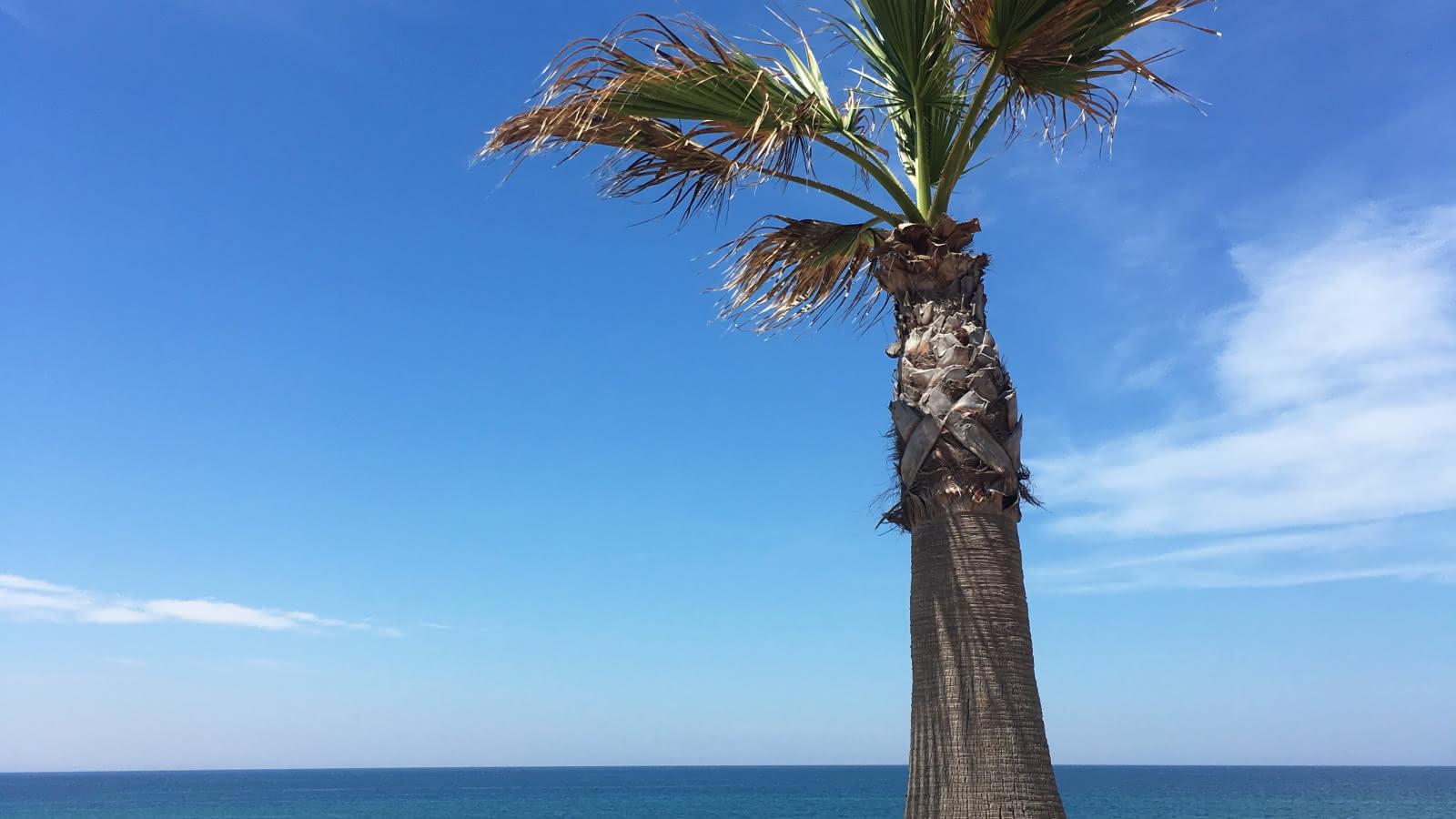 front de mer Lacanau