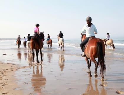 © Médoc Atlantique - Balades à cheval
