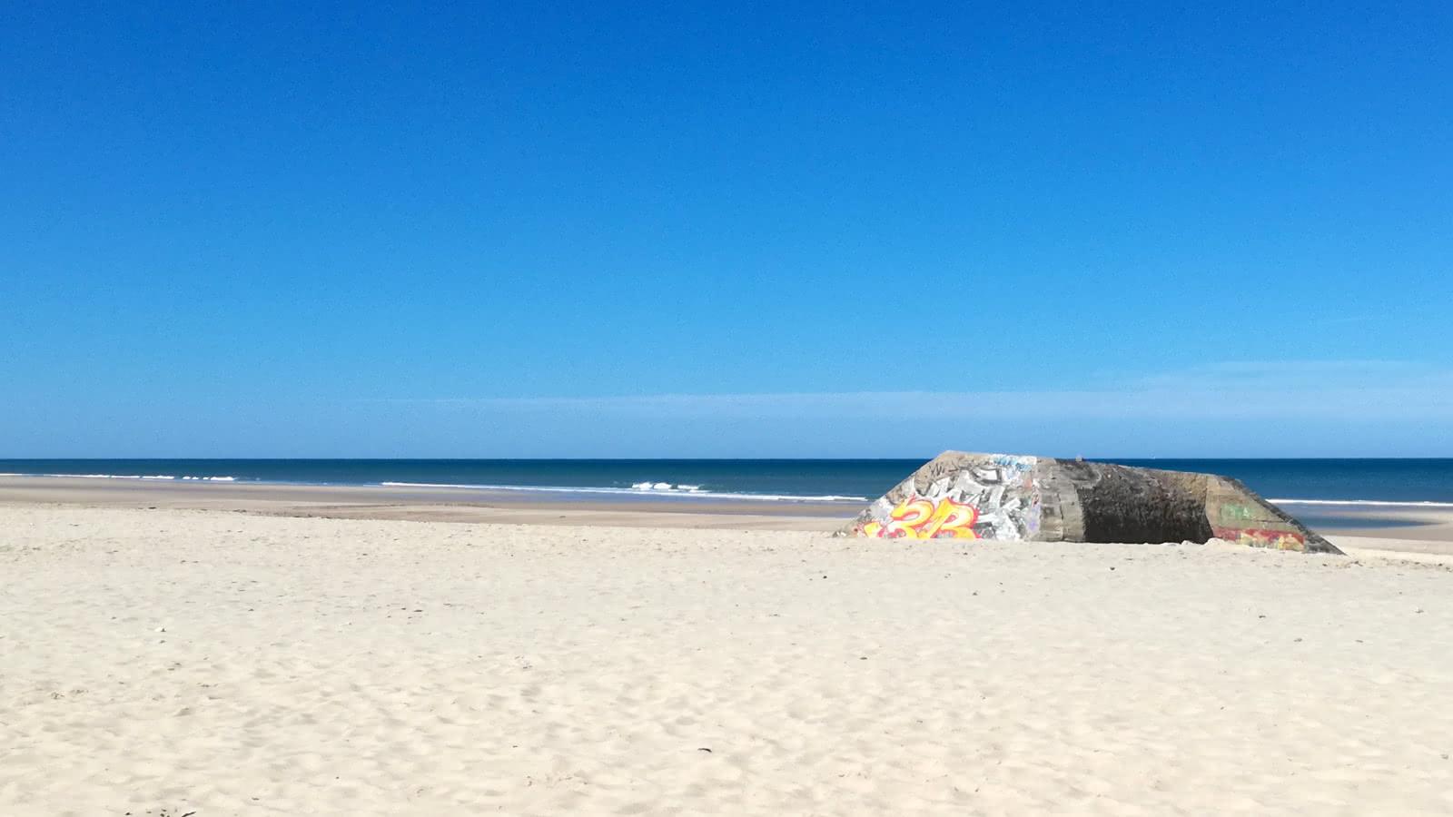 le-pin-sec-naujac-sur-mer-medoc-atlantique