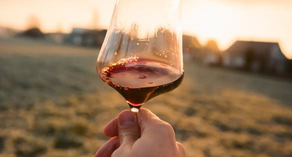 Déguster les vins du Médoc - Verre de vin Unsplash