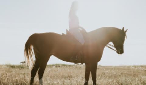 Faire du cheval Lacanau