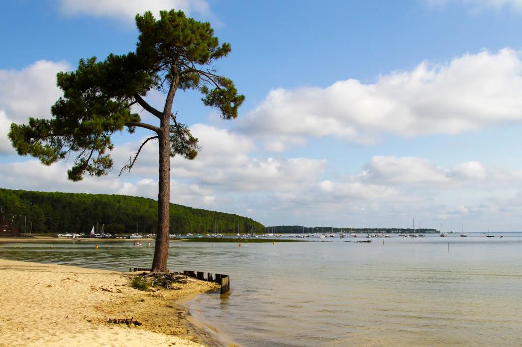 Lac-de-Carcans-----Dje---1-moment-1-image--2-