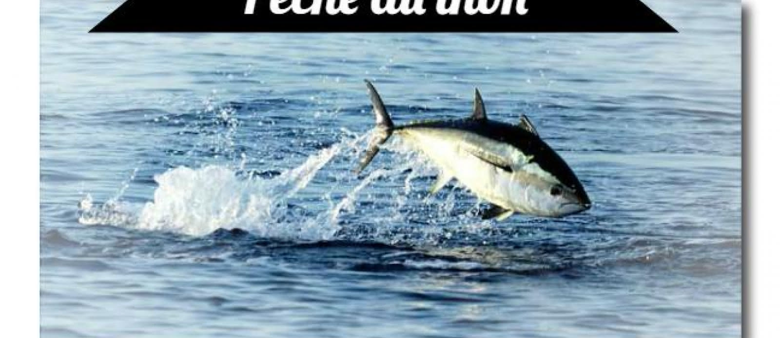 Pêche Arcachon2