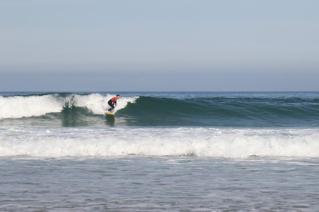 Koala Surf School 2