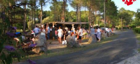 Cabane n°1 1