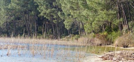 bord de lac piqueyrot