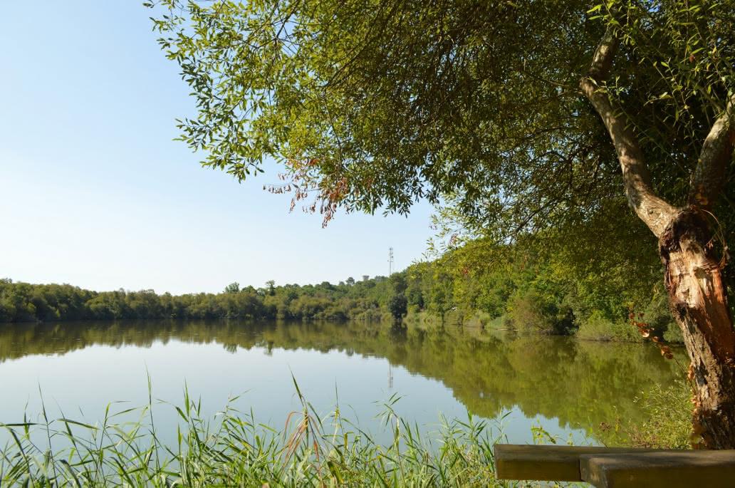 Lagune-de-Contaut-----Medoc-Atlantique--40--2