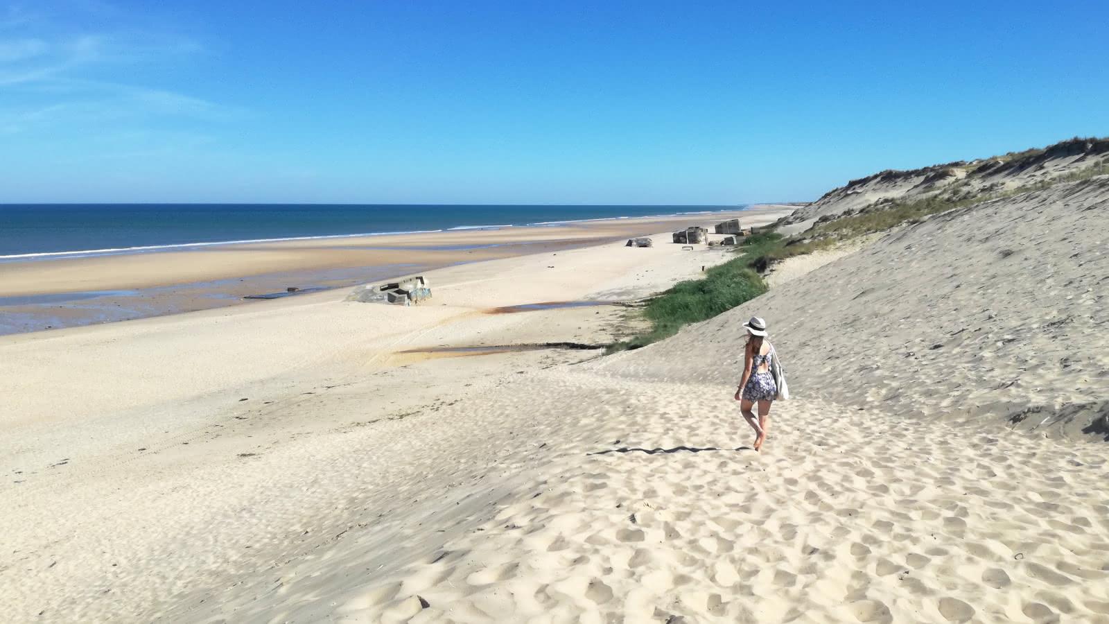 Le Pin Sec Naujac-sur-Mer - © Médoc Atlantique (21)