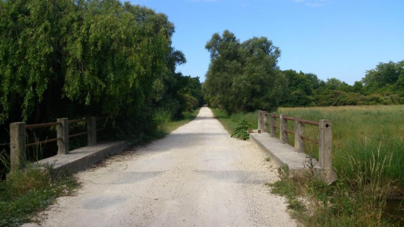 Marais-de-la-Perge-2-780x439