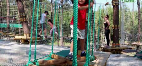 Animalia Parc - Accrospider